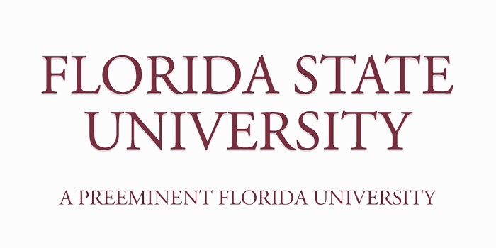 Florida State University Design Interactive Design Animation