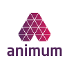 Animum Creativity Advanced School