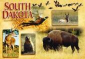 List of South Dakota schools with graphic design degree programs
