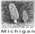 Illustration Schools in Michigan