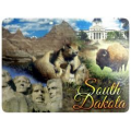 List of South Dakota schools with game art, game design, and game development de